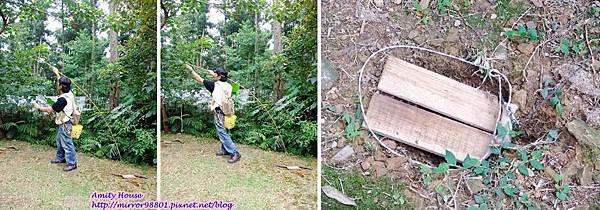 1010917 給樹的家 GESUW給樹營地 泰雅體驗營23