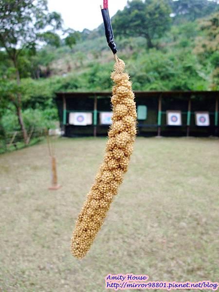 1010917 給樹的家 GESUW給樹營地 泰雅體驗營27