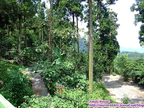 1010917 給樹的家 GESUW給樹營地 泰雅體驗營37
