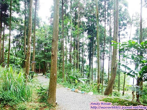 1010917 給樹的家 GESUW給樹營地 泰雅體驗營41