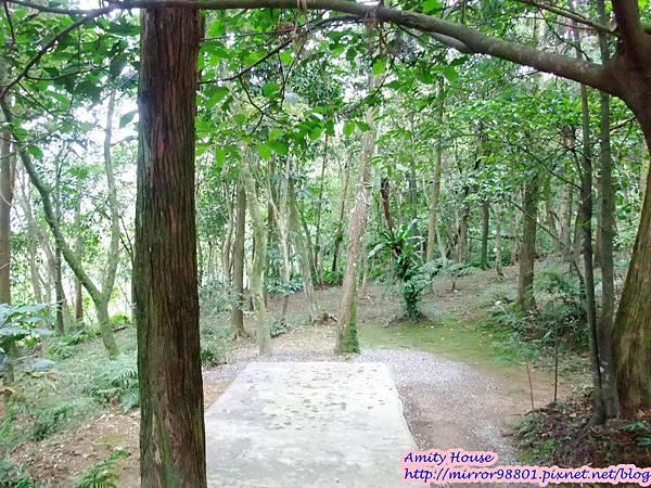1010917 給樹的家 GESUW給樹營地 泰雅體驗營42