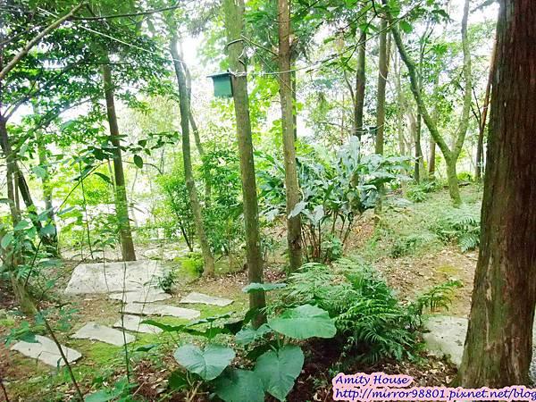 1010917 給樹的家 GESUW給樹營地 泰雅體驗營43
