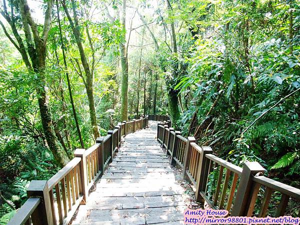 1010917泰雅in烏來 享吃又享玩 2012悠遊部落30生態步道
