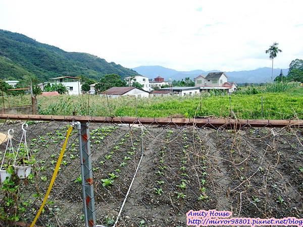 1011103-04台東武陵農村深度體驗025