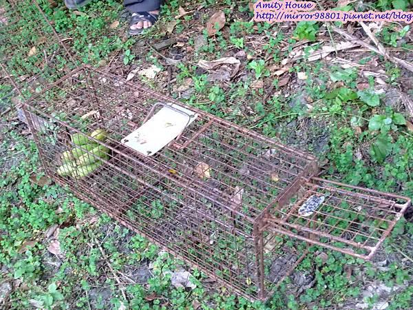 1011103-04台東武陵農村深度體驗099