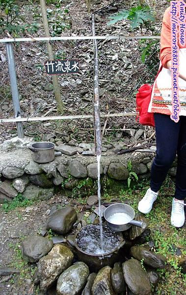 1011103-04台東武陵農村深度體驗117