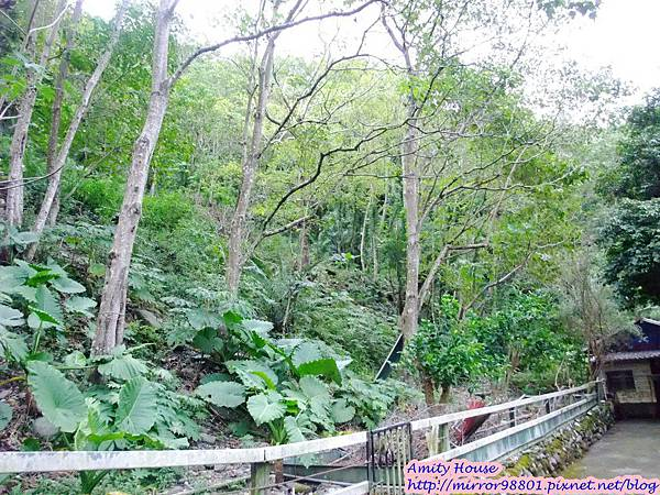 1011103-04台東武陵農村深度體驗121
