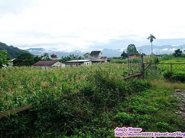 1011103-04台東武陵農村深度體驗199