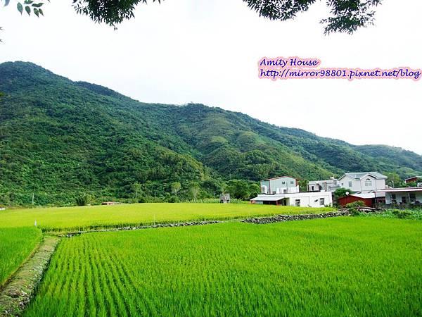 1011103-04台東武陵農村深度體驗206