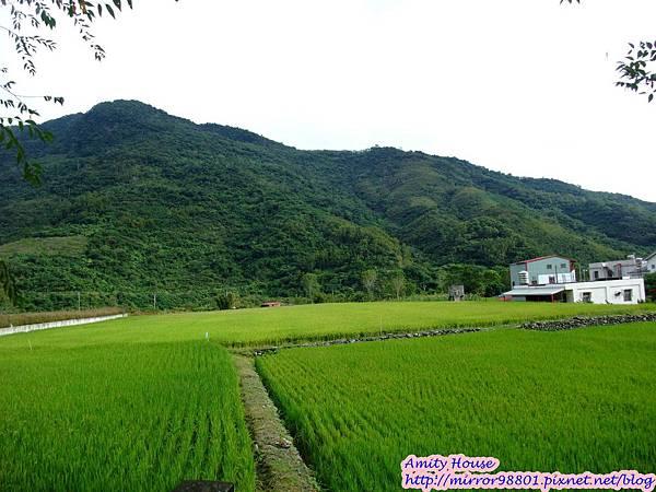 1011103-04台東武陵農村深度體驗207