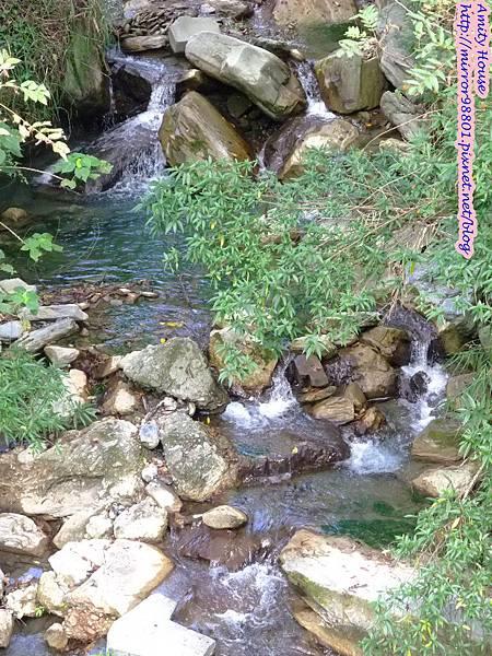 1011103-04台東武陵農村深度體驗289