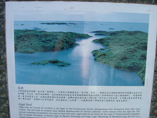 2010 Aug 淺水灣1.JPG
