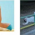 研究證實喝酒具有和瑜珈相同的好處8.jpg