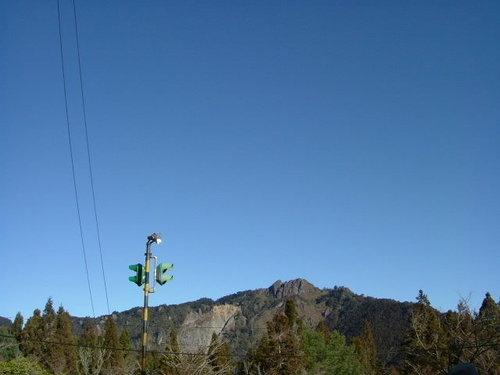 980128-29阿里山09.jpg
