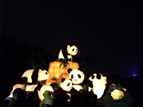 980214花燈02.jpg