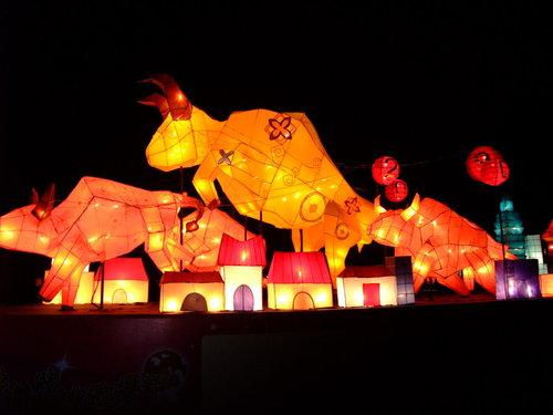 980214花燈06.jpg