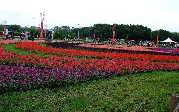 991106花博 新生 林下花圃花海區16.JPG