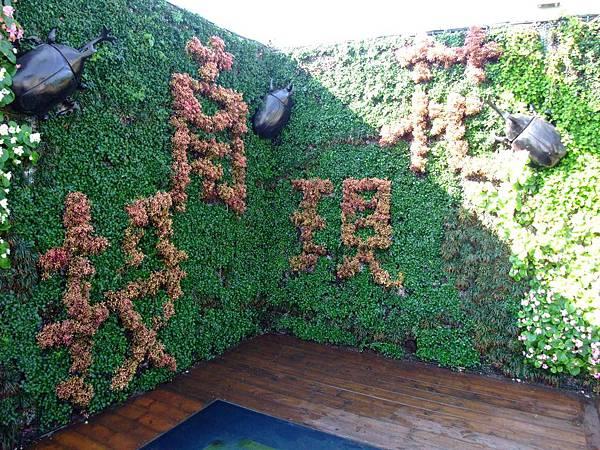 blog 花博 大佳 花圃競賽區 南投07.JPG