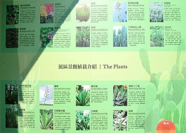 blog 花博 大佳 花圃競賽區 澎湖10.JPG