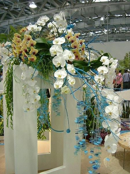 blog 991014花博測試 爭艷館02.JPG