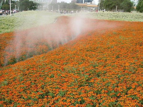 blog 991014花博測試 圓山公園區05.JPG