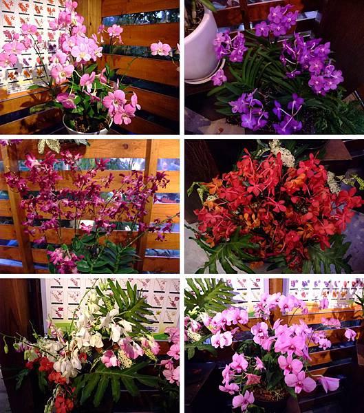 blog 花博 美術 寰宇庭園-泰國綺麗庭園中的祥和12.jpg