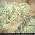 C360_2013-03-17-15-04-07