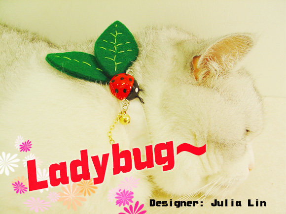 Ladybug‧小瓢蟲