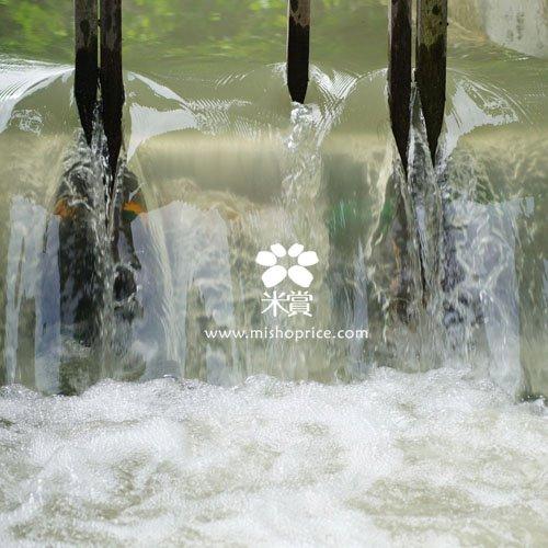 20110805米寶飲用的水,注入ing (2).jpg