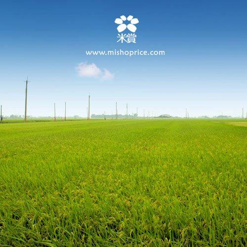 20111118 樂賞米的家(明傳阿伯vs.佳姿媽媽的田) (2).jpg
