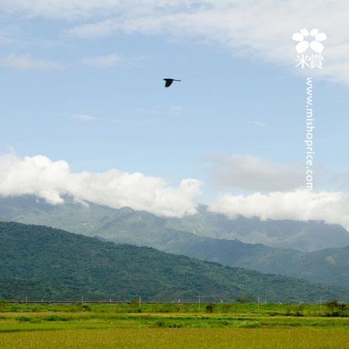 20111213 回味美好的旅行(三)-潘朵拉小明星們豋場 (10).jpg
