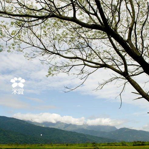 20111226 回味美好的旅行(四)-再見,花蓮玉里 (7).jpg