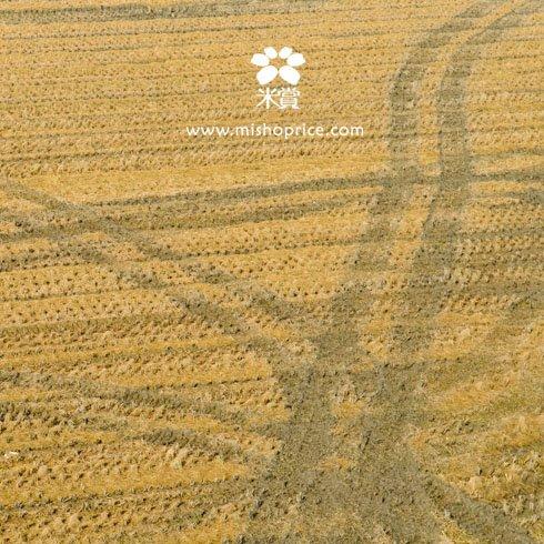 20111226 回味美好的旅行(四)-再見,花蓮玉里 (1).jpg