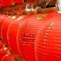 20120221 台灣元宵燈會 (10)