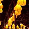 20120221 台灣元宵燈會 (3)