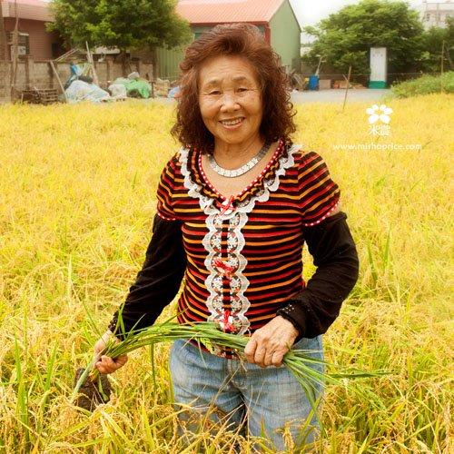 20120612 龍貓車經過稻田 (2)