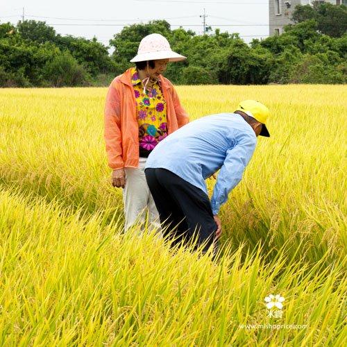 20120626 稻田真的發光啦! (2)
