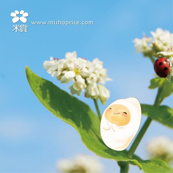 mishop-2010賞心米的日光