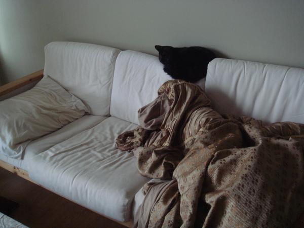 Saga couch
