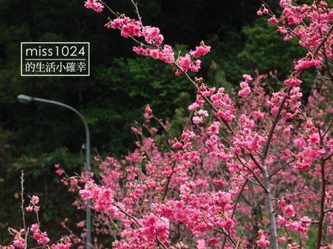 P2117570