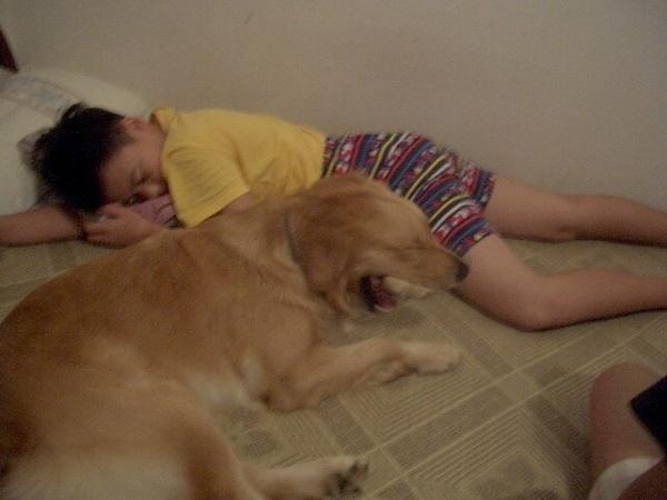 表弟在睡覺,SOFI 在一邊跟著打呵欠...