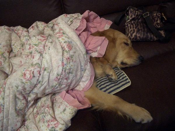 睡到姊姊都起身走了,電視關了,我還沒醒~