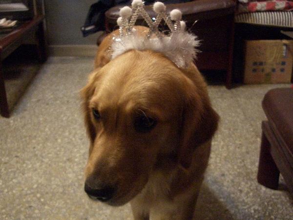 我是小公主喔...(羞)