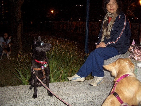 裝乖的KURO跟瘋狂MIGO綁在一起