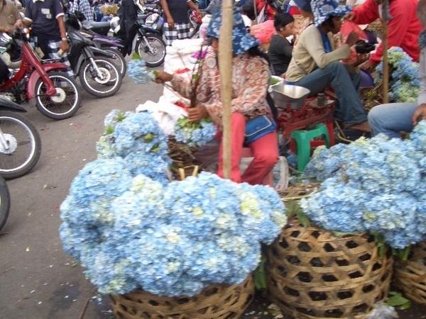 路邊賣花的阿婆