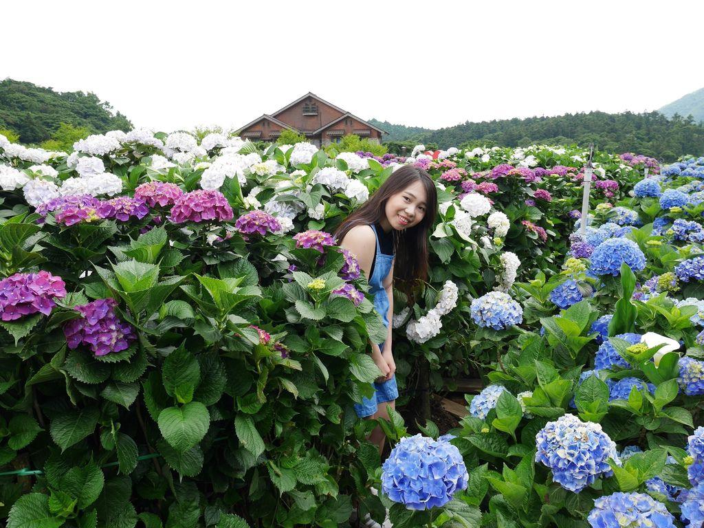 22歲的繡球花冒險之旅🌺🌸🌼🌻💐🌷🌹_180522_0306.jpg
