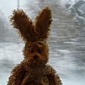 一起旅行的法國小兔
