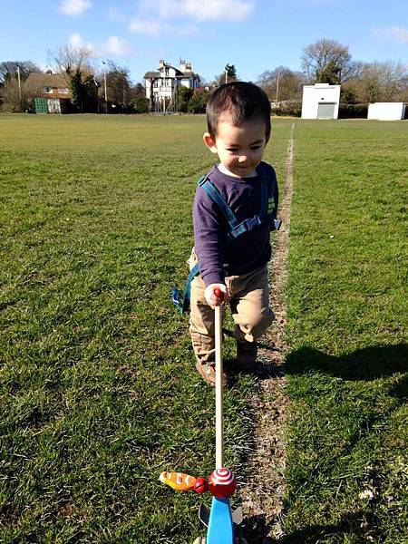 Darcy walking with stick 3