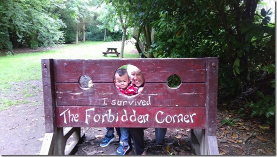 Forbidden Corner Aug2015 4
