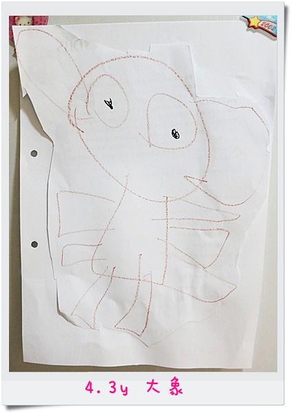4.3y 大象